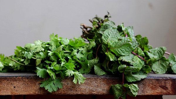 野菜の育て方で大事なプランター選び方の7つのコツ