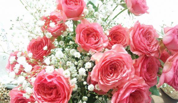 出会いと別れの季節にオススメ!贈る花と花言葉一覧