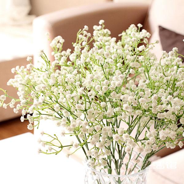 カスミソウの花言葉に合わせて、一緒に花束にすると素敵な7つの花