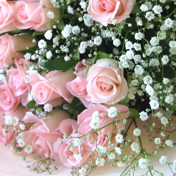 カスミソウの花言葉で、お世話になった人へ感謝を伝える7つの方法