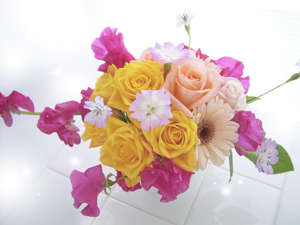 卒業や引っ越しに渡したい、別れの言葉にふさわしい7つの花