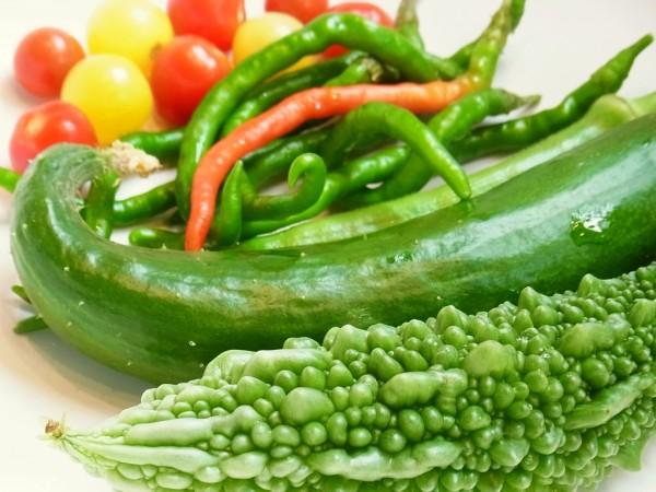 【種目別】実のなる野菜の栽培~収穫まで成功させる7つのコツ