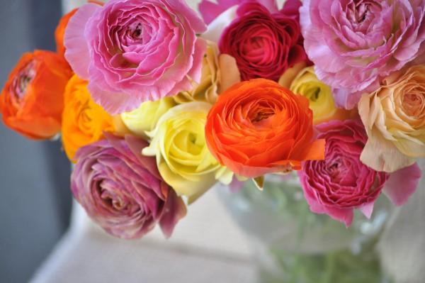 ラナンキュラスの花言葉を使って粋な告白をする5つの方法