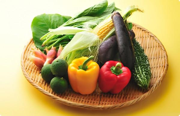 夏野菜の育て方、上手にベランダで作るための7つの方法☆