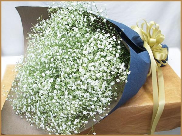 かすみ草の花言葉を使って感謝を表す花束を作る7つの方法
