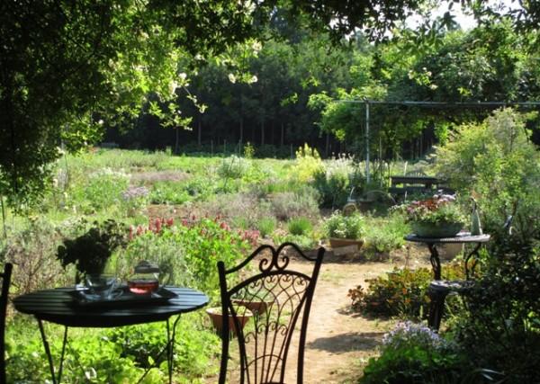 ハーブ庭園旅行を10倍満喫!施設を楽しむ7つのポイント