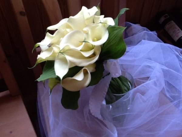 カラーの花言葉が花嫁の美しさをより輝かせる7つの理由