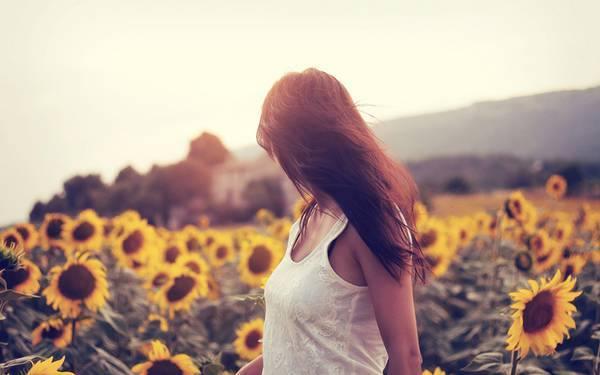 ひまわりの花言葉が片思いを募らせる乙女にぴったりな理由