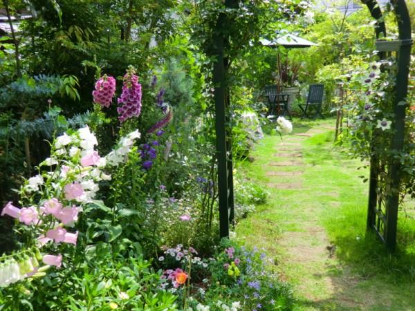 ガーデニング初心者が育てやすい7つのおすすめの花とコツ