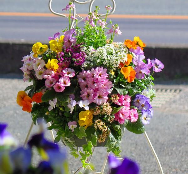 冬花でお正月を盛り立てよう☆色鮮やかに演出するコツ