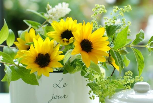 夏花で心も体も元気になる?お部屋に飾るおススメ品種