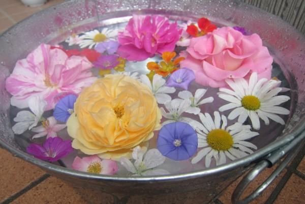 夏の花を贈る☆お中元に最適なフラワーギフト7選