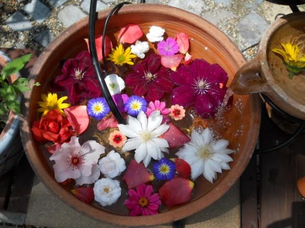 夏の花インテリア☆お家で楽しむおススメ7つの花々