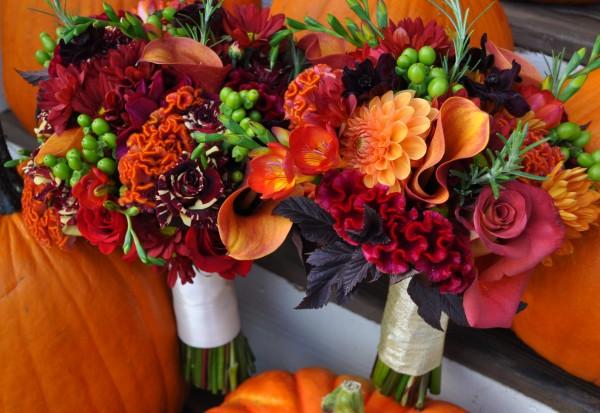 誕生日花を贈るなら☆愛の花言葉を持つ秋の花々