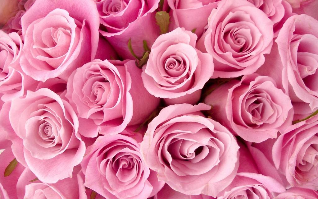 出産祝いに花束プレゼント☆祝福の花言葉を添えて