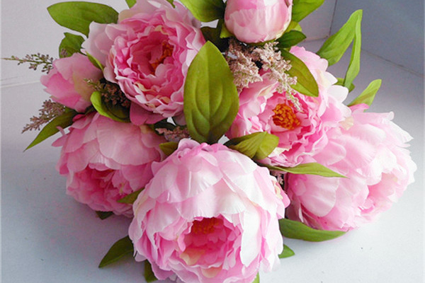 牡丹の花言葉と豆知識☆女性に贈る7つの理由