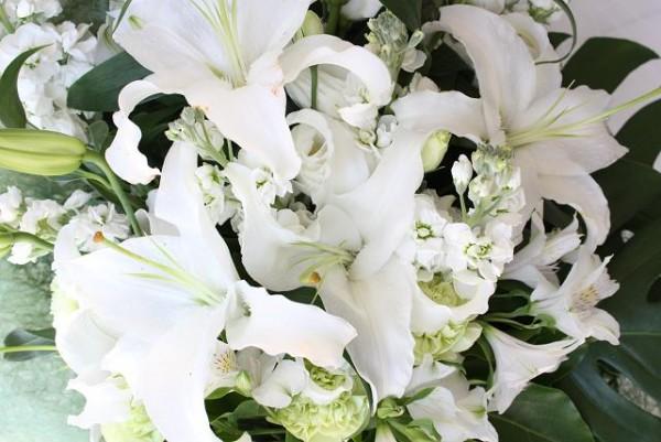 ユリの花は贈っていい?選ぶ前に確認したいタブー集