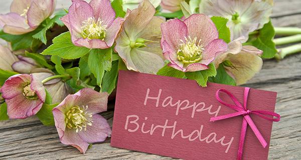 花言葉で友情を伝える☆大切な友人の誕生日に贈る花