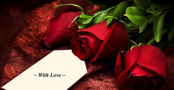 赤いバラ花言葉の愛情☆伝えたい真心7つのメッセージ