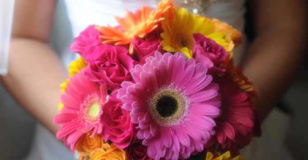 ガーベラの花言葉と品種☆本数でも変わるメッセージ