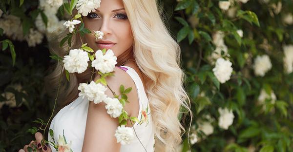 白薔薇の花言葉は?気持ち伝える7つの色の組み合わせ