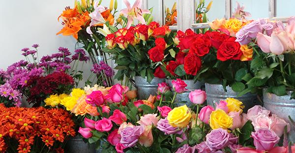 花を長持ちさせて楽しむには☆プロが教える7つのポイント