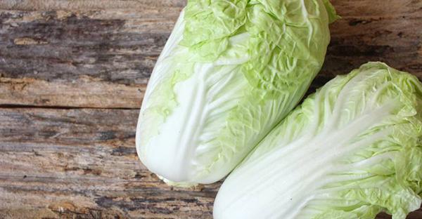白菜の育て方を家庭菜園で☆プランター栽培7つの手順