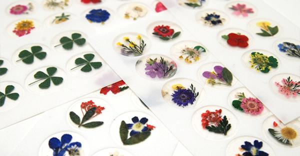 押し花の作り方☆贈り物に添えたいカード、7つの手順