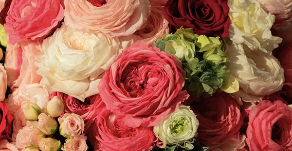 枯れない花を贈ろう!おしゃれで楽チン、おすすめギフト