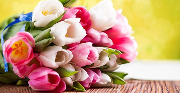 3月の誕生花の花束ギフト☆贈られて嬉しい7つの花々