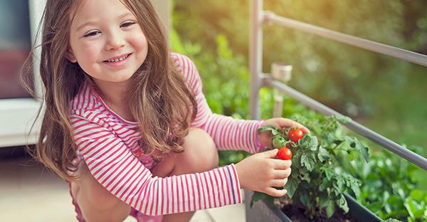 ベランダ菜園で暮らしを豊かに☆おすすめ野菜と収穫まで