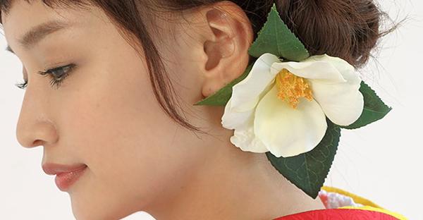 椿の花言葉に魅了される☆光と影が見える7つのメッセージ