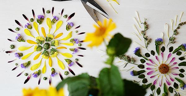 押し花作りはとっても簡単 ☆ プロが教えるマル秘ワザ
