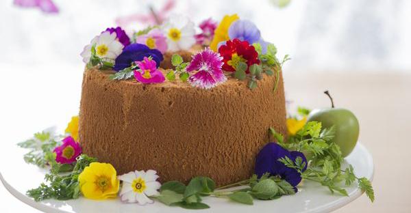 食べられる花エディブルフラワー☆食を彩る7つの花々