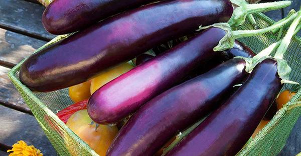 ナスの育て方☆プランターで美味しく収穫!7つの手順