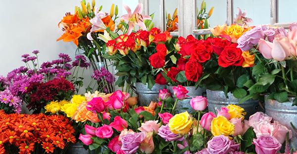 季節の花ギフト☆春夏秋冬、喜ばれるおすすめ7つの花々
