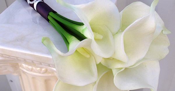 花言葉でさりげなく感謝を☆相手別、おすすめ7つの花々