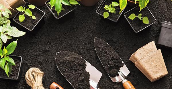 園芸用品の揃え方☆初めてさんが揃えるべき7つの道具