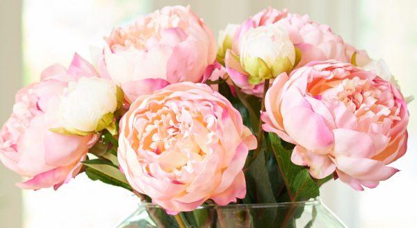 誕生日に贈る言葉と相手を感動させる花選びのポイント