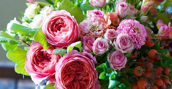 花言葉で友情のエール☆応援したい友人へ送る7つの花々