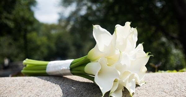 6月の花で祝福を贈る☆ブーケにしたい花々と花言葉