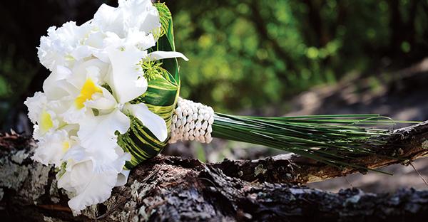 11月の花を贈るなら☆季節を演出する7つの可愛い花々