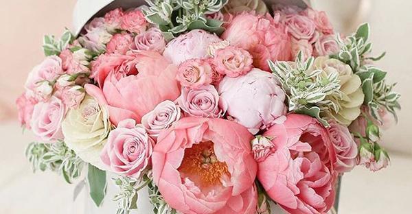 花言葉で友情メッセージ☆遠くで頑張る友人へ届ける花々