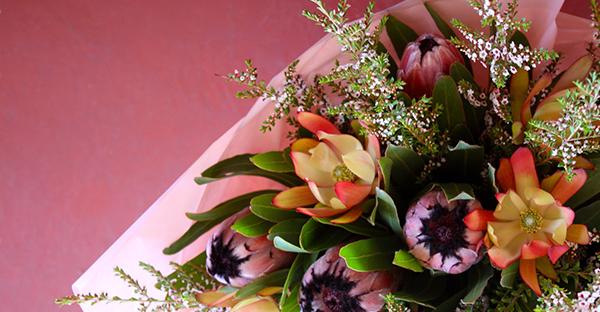 10月の誕生花メッセージ☆気持ちを伝える、可愛い花々