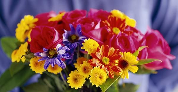 11月の誕生花でメッセージ☆伝えたい花言葉を持つ花々