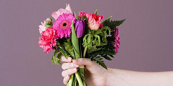11月の花を贈る☆女性のタイプで選ぶ、おすすめの花々