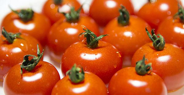 ミニトマトの育て方☆上級者向け、美味しい実がなるコツ