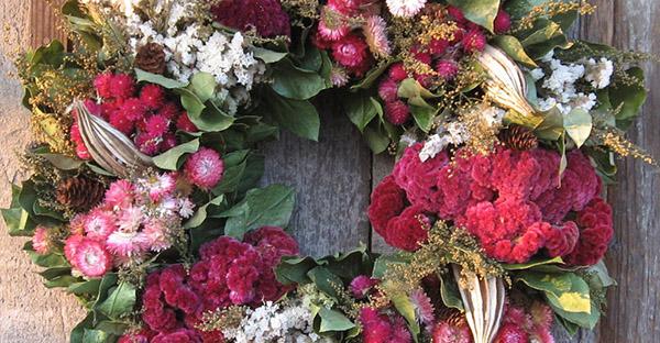 12月の花贈りで季節を感じる☆贈って喜ばれる花々とは