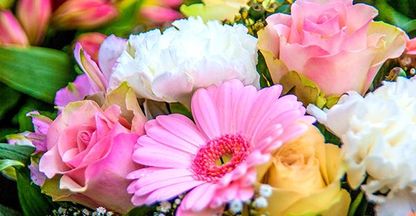 7月の花で気持ちを伝える☆相手で選ぶ、おすすめの花々
