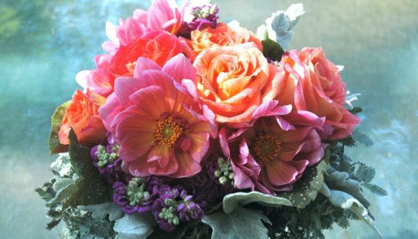 9月の誕生花をプレゼントする時のポイントと注意点